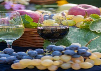 XV Међународно оцењивање вина и ракија
